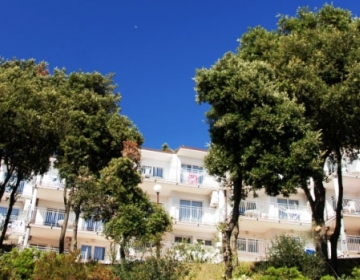 Apartmaji HORIZONT